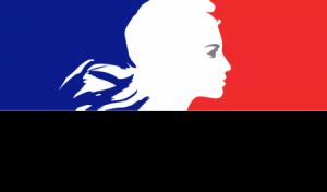 Dronelink Logo Prefecture